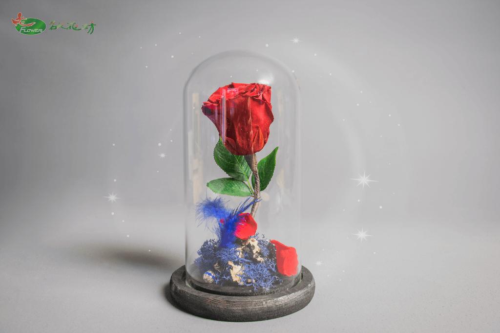 七夕情人節禮物首選|玻璃罩永生花設計|玫瑰永生花|名人花坊